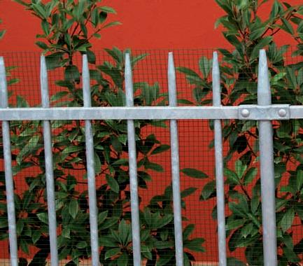 recinzione conic 3
